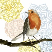 Framed Mandala Bird IV