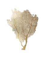 Framed Gold Foil Sea Fan I
