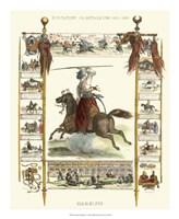 Framed Equestrian Display IV
