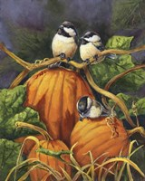 Framed Chickadees And Pumpkins