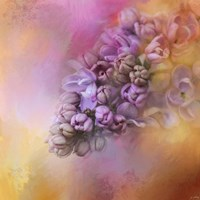 Framed Sun On The Lilacs