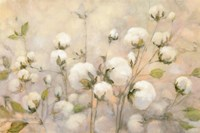 Framed Cotton Field