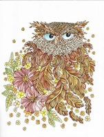 Framed Watercolor Feathery Owl