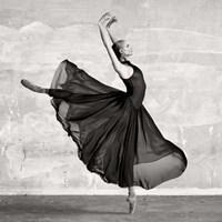 Framed Ballerina Dancing (detail)