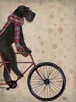 Framed Schnauzer on Bicycle, Black