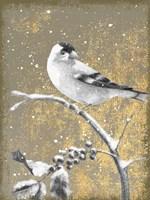 Framed Winter Birds Goldfinch Neutral