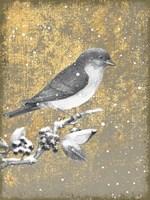 Framed Winter Birds Bluebird Neutral