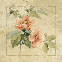 Framed Provence Rose I