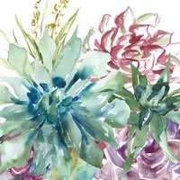 Framed Succulent Garden Watercolor II