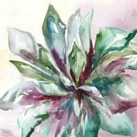 Framed Succulent Watercolor II
