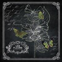 Framed Chalkboard Botanical II