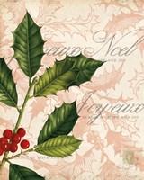 Framed Vintage Noel I