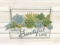 Framed Beautiful Life Succulents