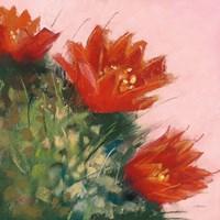 Framed Blooming Succulent IV