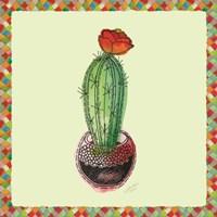 Framed Rainbow Cactus I
