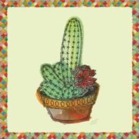 Framed Rainbow Cactus III