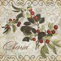 Framed Pastoral Fruits III