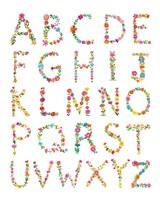 Framed Floral Alphabet