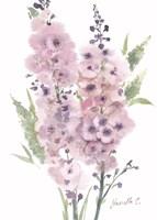 Framed Flower Series 4