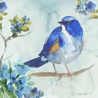 Framed Bird On Branch 1