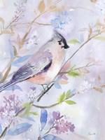 Framed Pastel Birds 1