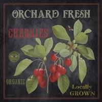 Framed Orchard Fresh Cherries