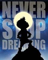Framed Never Stop Dreaming