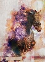 Framed Horse Jumping