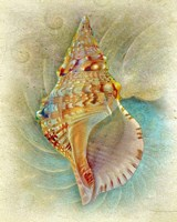 Framed Aquatica I