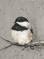 Framed Winter Bird IV