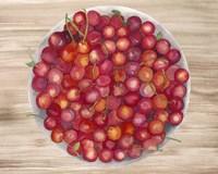 Framed Bowls of Fruit IV