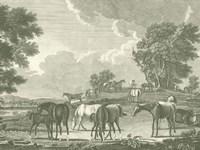 Framed Equestrian Scenes I