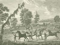 Framed Equestrian Scenes III