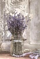 Framed Lavender Bench