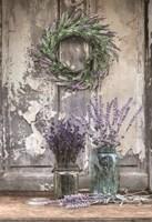 Framed Cutting Lavender