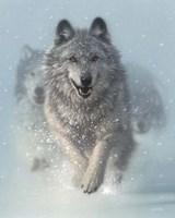 Framed Running Wolves - Snow Plow