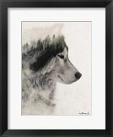Framed Wolf Stare