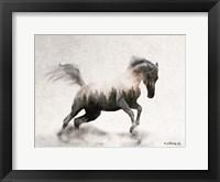 Framed Running White Stallion