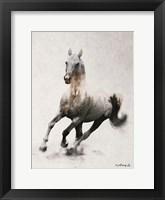 Framed Galloping Stallion