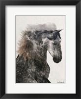 Framed Proud Stallion