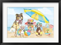 Framed Summer Paws I