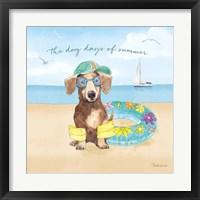 Framed Summer Paws III