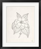 Framed Gardenia Line Drawing