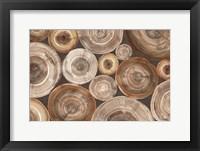 Framed Rings of Life II