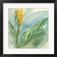 Framed Exotic Flower II