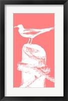 Framed Perching Seabird I