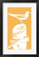 Framed Perching Seabird III