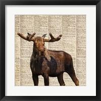 Framed Country Moose I