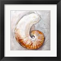 Framed Pearl Shell Medley I