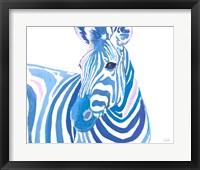 Framed Vibrant Zebra